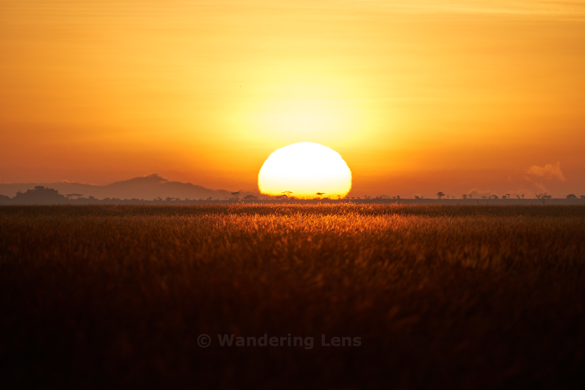Sunrise over the Serengeti, the endless plain