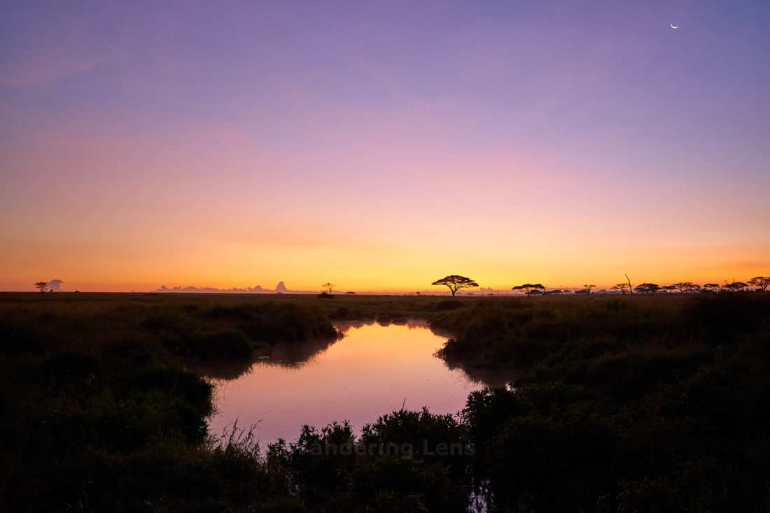 Sunrise over the hippo pools